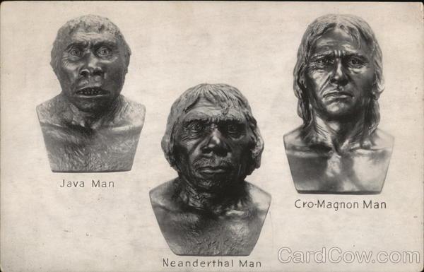 Java Man Neanderthal Man Cro Magnum Man Postcard