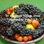 St Dogmaels Village Show