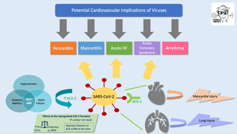 COVID-19 Cardiovascular Implications by Carine Hamo, MD