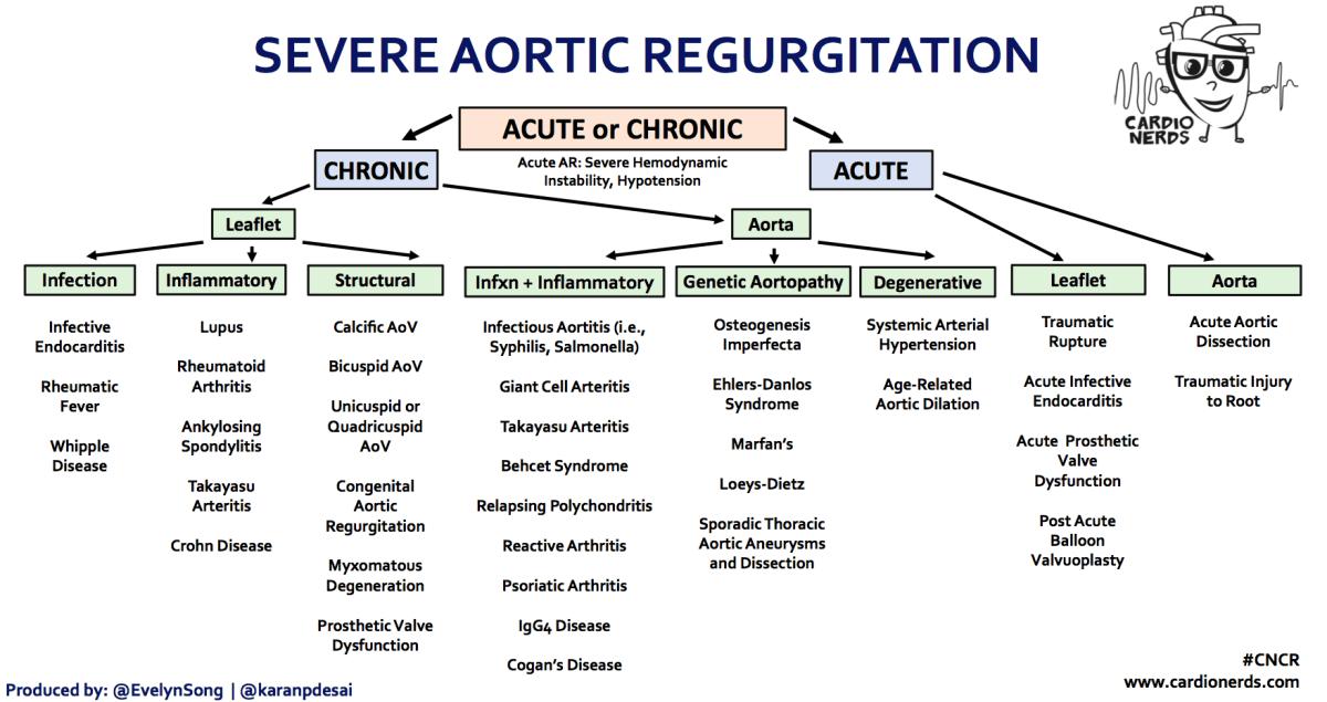 Severe Aortic Regurgitation - CardioNerds