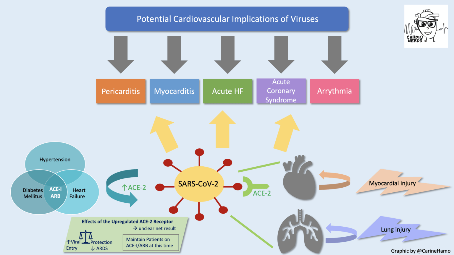 COVID-19 Cardiovascular Implications