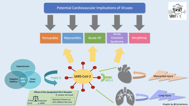 COVID-19 Cardiovascular Implications