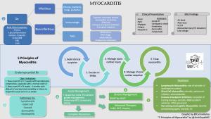 30. Myocarditis with Drs. JoAnn Lindenfeld, Javid Moslehi and  Dr. Enrico Ammirati: Part 2