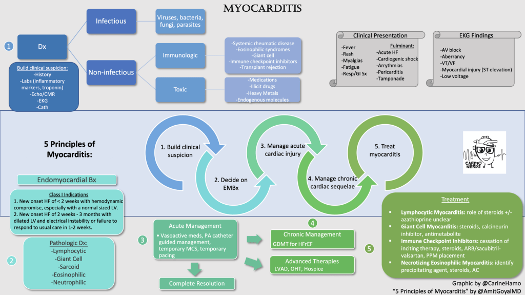 CardioNerds Myocarditis