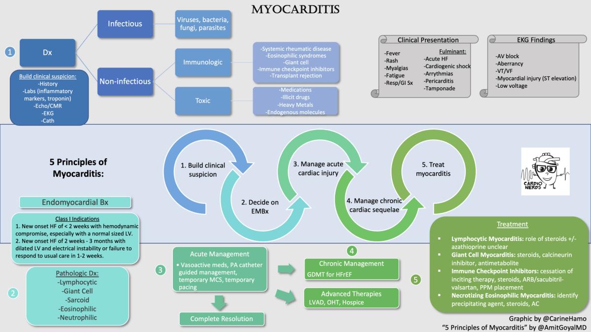 CardioNerds Myocarditis