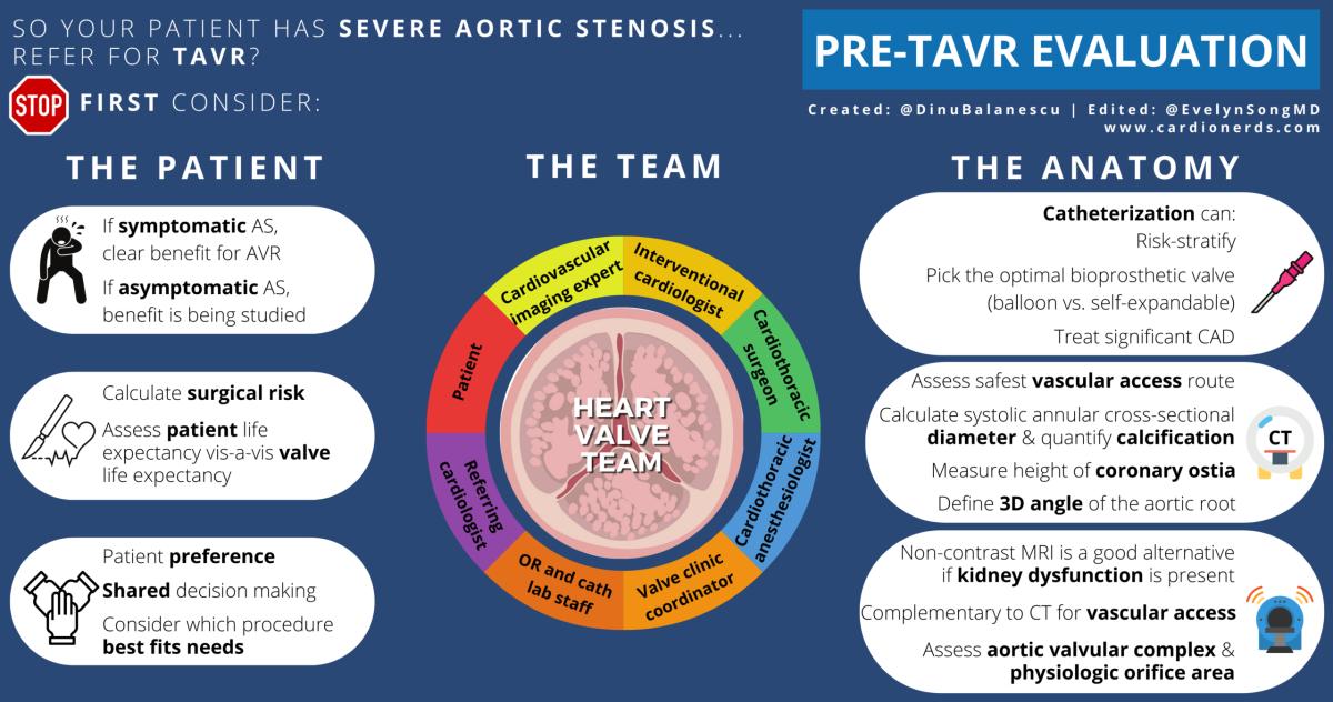 Pre-TAVR infographic