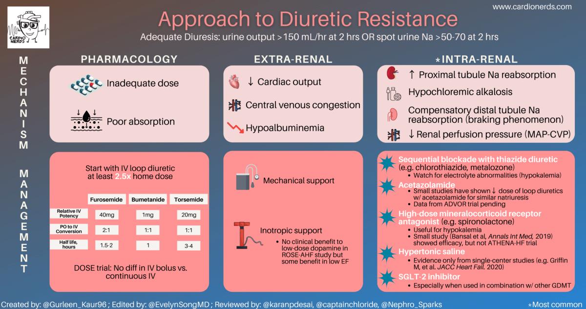 CardioNerds Diuretic Resistance Infographic