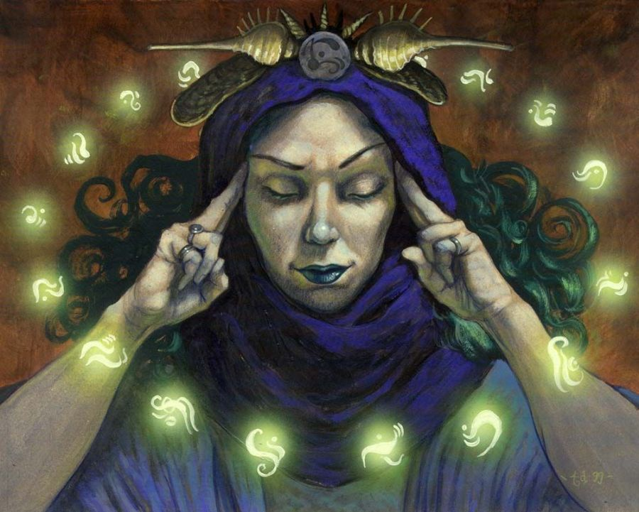 Pursuing Pauper: Introduction to Pauper