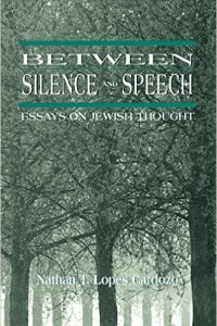 Cover: Between Silence & Speech