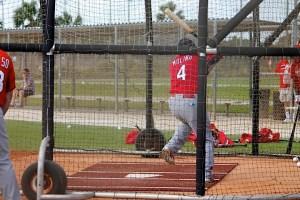 Yadi in cage