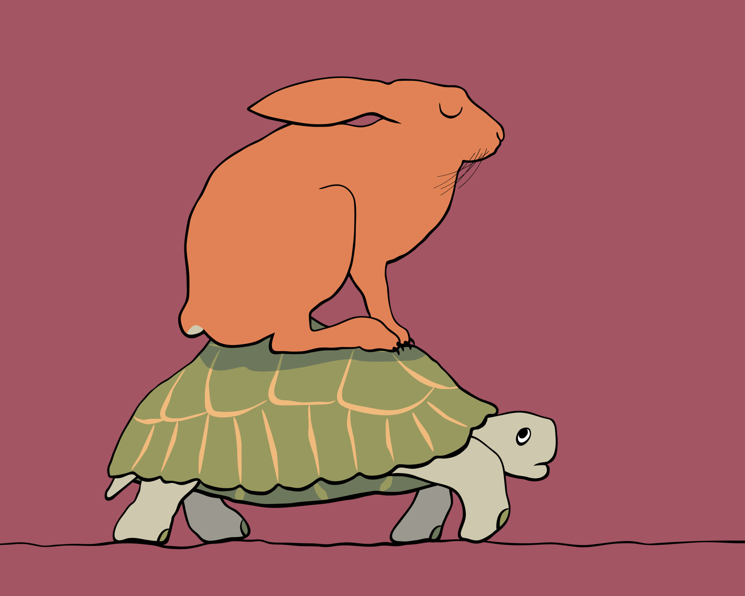 Technology and Care: How a Tortoise Became a Hare