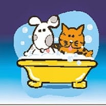 Pet courses - illustrated picture of a cat and dog