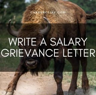 How to Write a Salary Grievance Letter