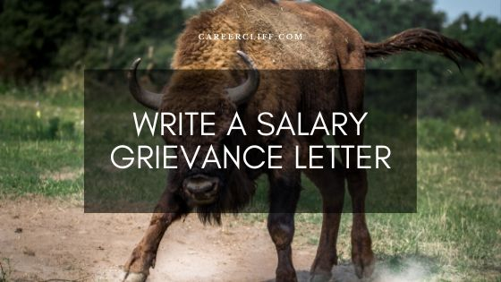How to Write a Salary Grievance Letter to HR