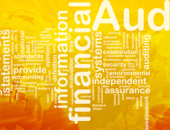 audited-financial