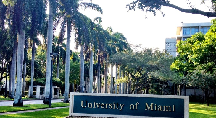 Stamps Scholarship at University of Miami in USA 2020