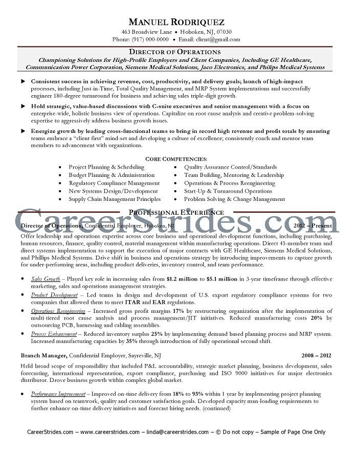 resume director it operations director of operations resume decorating ideas