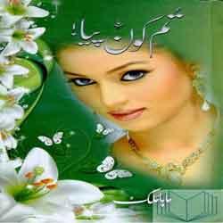 Urdu Novels By Maha Malik Pdf