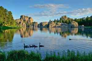 South Dakota's Black Hills, Black Hills for kids, Custer State Park