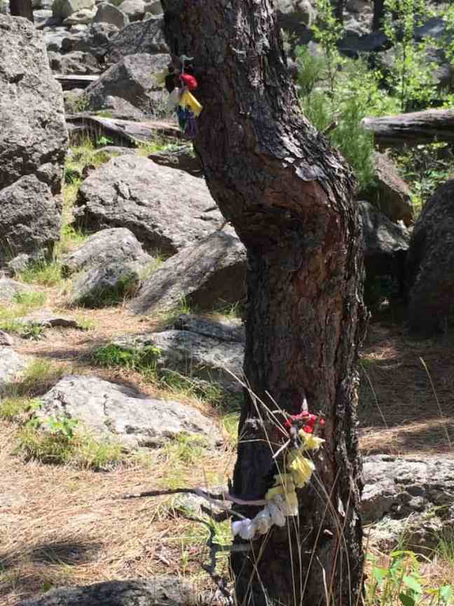 Hike the Tower Trail at Devils Tower National Monument.