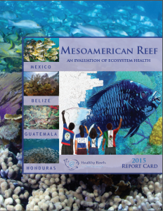 2015 Report Card:  Mesoamerican Reef -  An Evaluation of  Ecosystem Health