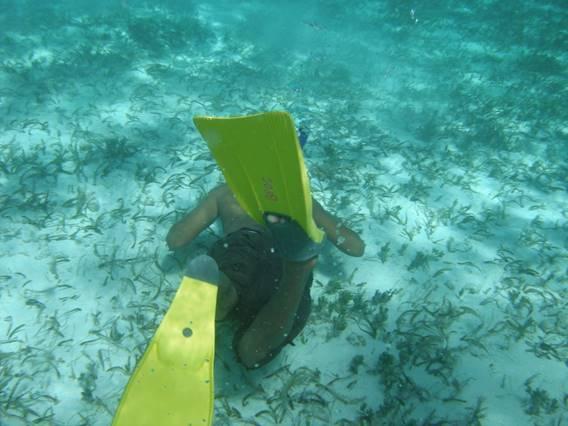 Kids 4 Clean Water - Belize