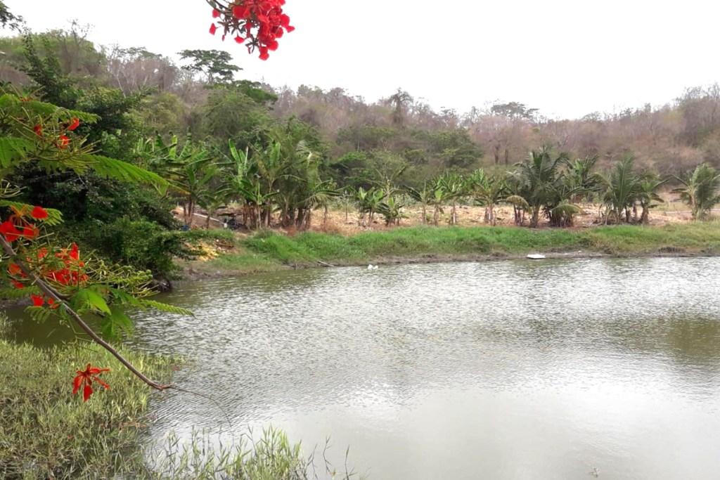 Levera Pond