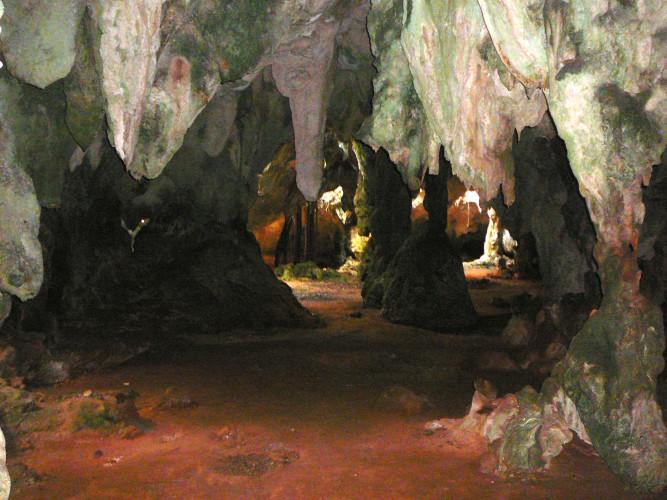 Hamilton's Cave (Photo by Carolyn Wardle)