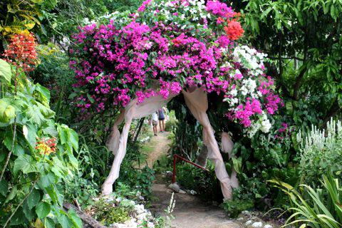 Ahhh…Ras Natango Garden
