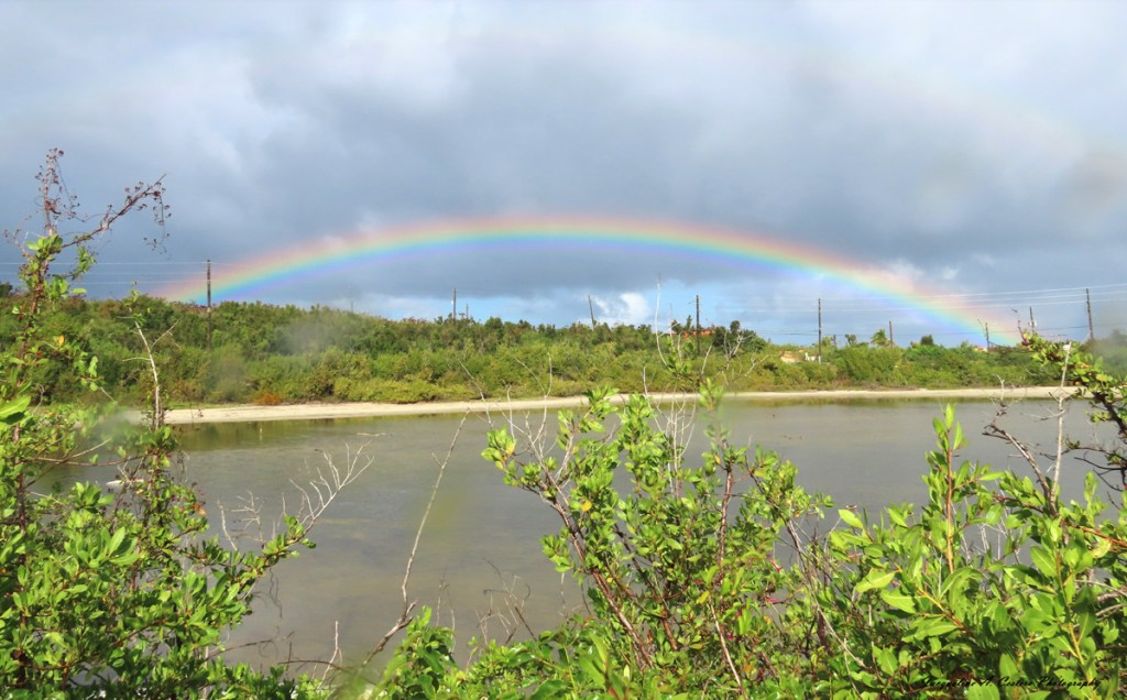Rainbow over Meads Bay Pond (Western End)