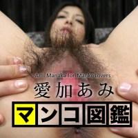 マンコ図鑑 愛加あみ