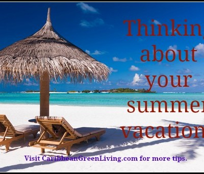 Thinking about your summer vacation? Get the Best of Your Trip with Good Planning