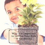 Why it is Important to Involve Your Kids in Gardening