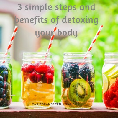3 simple steps and benefits of detoxing your body