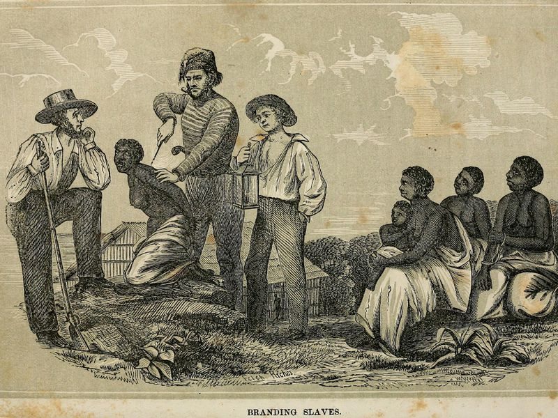 And Black Pictures British And American Cartoon White Fight