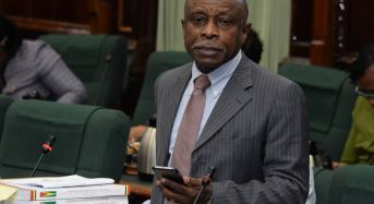 Good image critical to Guyana's presence on international stage – Min. Greenidge