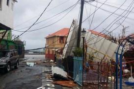 Dominica Damage