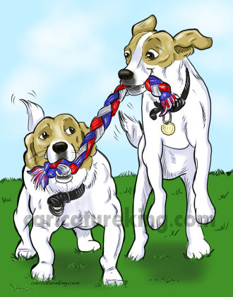 playing dogs caricatures