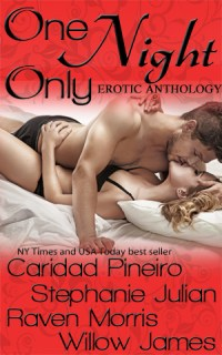 ONE NIGHT ONLY Erotic Romance Anthology