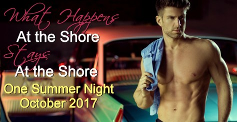 Owen Pierce One Summer Night Contemporary Romance by Caridad Pineiro