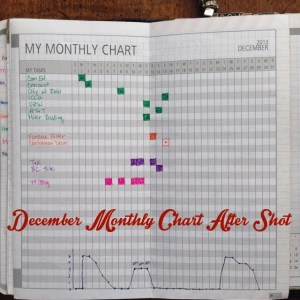 December Monthly Chart After Shot