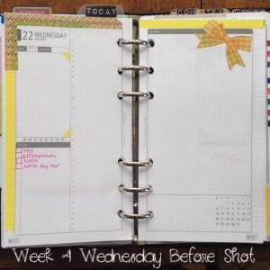 Week 4 Wednesday Before Shot