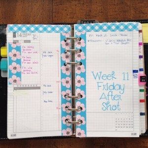 Week 11 Friday After Shot -- Filofax Personal Malden with DIYFish Lifemapping Inserts