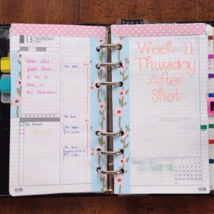 Week 11 Thursday After Shot -- Filofax Personal Malden with DIYFish Lifemapping Inserts