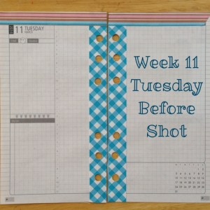 Week 11 Tuesday Before Shot -- Filofax Personal Malden with DIYFish Lifemapping Inserts