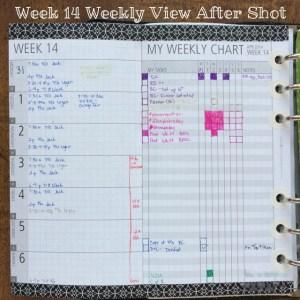 Week 14 Weekly View After Shot