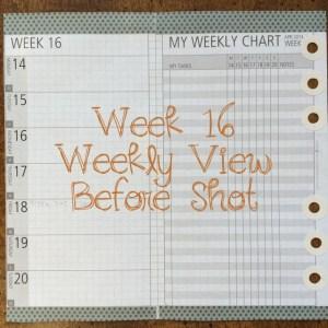 Week 16 Weekly View Before Shot