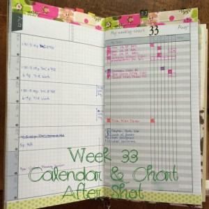 Week 33 Calendar & Chart After Shot