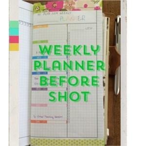 Week 33 Weekly Planner Before Shot