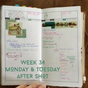 Week 34 Monday & Tuesday After Shot